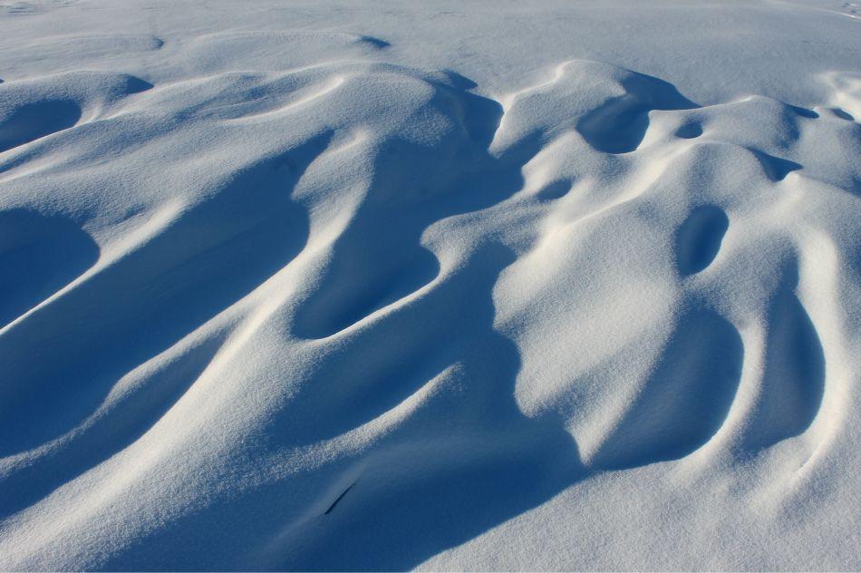 Photo Essay-Drifts in Winter (7)
